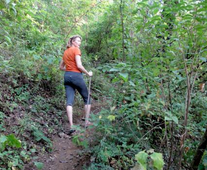 De paseo en un recorrido forestal del área