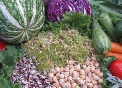 Vegetales y germinados orgánicos