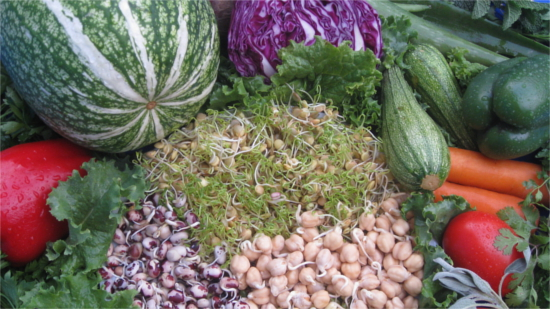 Vegetales y germinados frescos. Retiro de Desintoxicacion y Yoga